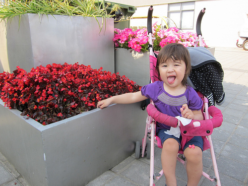 Maryann and Charlotte went to the Expo today. Maryann posed by some pink flowers and made a silly face. They had a good time, but it was tiring and they came back after only 4 or 5 hours.